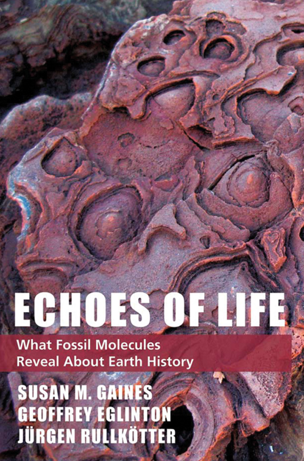 Echoes of LifeWhat Fossil Molecules Reveal about Earth History